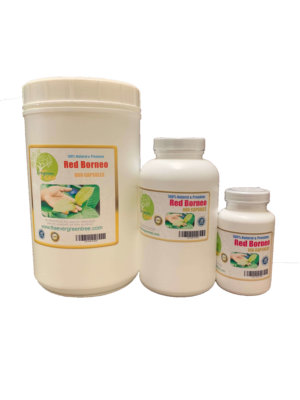 Red Borneo kratom Capsules, Red Borneo Kratom Capsules (500mg), Buy Kratom Online - the evergreen tree  