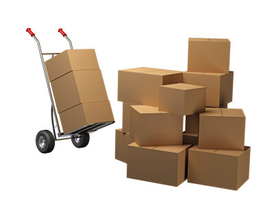 kratom vendor, Shipping, Buy Kratom Online - the evergreen tree  