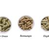 free kratom sample capsule, Free Kratom Sample Capsule (500mg) 10ct 1.5-1.7% Alkaloid, Buy Kratom Online - the evergreen tree  