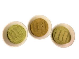 free kratom sample powder, Free Kratom Sample Powder 5g – 1.8% Alkaloid, Buy Kratom Online - the evergreen tree |, Buy Kratom Online - the evergreen tree |
